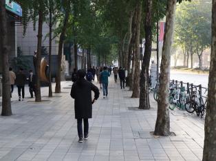 [21일 날씨] 일요일, 대체로 '맑음'…낮 최고기온 '영상22도'