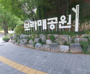 [포토] 도심속 건강한 휴식처 '보라매공원'
